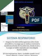 1. Anatomía Sistema Respiratorio 1 1