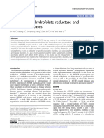 Methylenetetrahydrofolate Reductase and Psychiatric Diseases