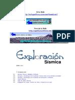 314792474-Exploracion-Sismica-I.pdf