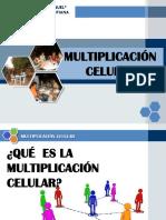 Multiplicacion Celular
