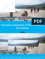 Yammine - Venezuela Conmemoró El Día Mundial de LosOcéanos
