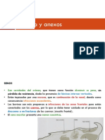 6-Cabez-y-anexos.pdf