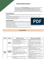 PLANIFICACIÒN ANUAL MAT.docx