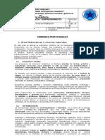 373761421 Carreras Profesionales Convertido