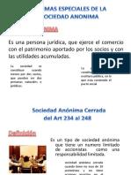 96445166 Formas Especiales de La Sociedad Anonima