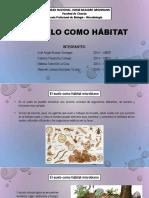 07 Metabolismo Identificacion y Taxonomía
