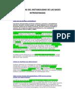 Patologias Del Metabolismo de Bases Nitrogen Ad As