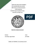Informe Físcia Caudales.docx