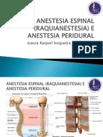 Anestesia Espinal (Raquianestesia) e Anestesia Peridural