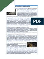 Impacto económico de la mineria en el Perú -2do año -ANEXO 1.docx