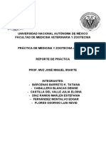 Reporte Avícola I .pdf