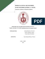 3°INFORME IPQ.docx