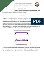 Informe Lab. Flexion 2019-i