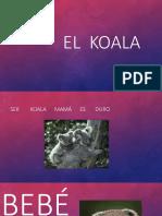 El  koala.pptx