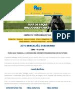 Kupdf.net Turbine Seu Css Folhas de Estilo Inteligentes Com Sass