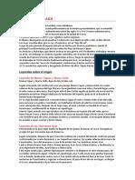 CIVILIZACION INCAICA.docx