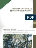 Desarrollo Sostenible y Proyectos Productivos