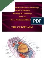 3. Cytoplasm