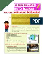 La Contaminación Ambiental Para Quinto de Primaria