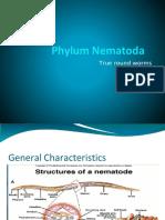 Phylum-Nematoda.docx