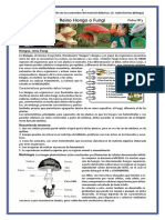 FICHA_DIDÁCTICA_Nº2_REINO_HONGO_PROTOCTISTA_2º_INAES_2019.docx