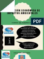 Valoración Económica de Impactos Ambientales