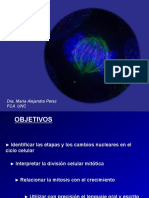 Teorico-5-Ciclo-celular-Mitosis.pdf