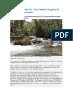 Bosque Protector Los Cedros Le Gana La Batalla a La Minería