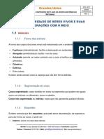 Grandes-Ideias-Resumo-5-CN.pdf