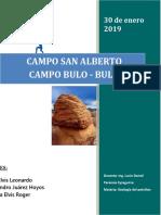 Proyecto Final San Alberto y Bulo Bulo