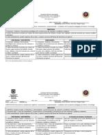 Formato Desempenos Palermo 2019 Jextendida Rb