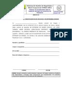 SSO-EST-G-01-002 x Anexo 01 - Declaración de Riesgos - Versión 4