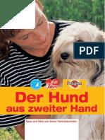 Hund aus zweiter Hand