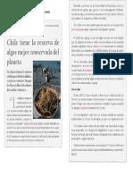 Noticia Prueba
