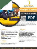 Curso Operador de Planta de Gas y Petroleo
