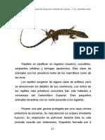 reptiles.pdf