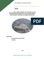 PLAN DE NEGOCIO - PALTO.pdf