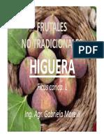 7-Cultivos Alternativos Higuera Modo de Compatibilidad