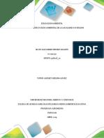 Problematica Ambiental Del Entorno_Silvio a Idrobo