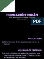 micropaleontología13. Formación Cobán
