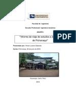 Ing Procesos Infor, Pichanaki