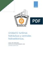 Tema 6 Turbinas Hidráulica y Centrales Hidroeléctricas