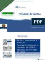 Formacion de Biofilms 0913