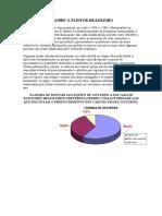 Informações Sobre o Eleitor Brasileiro