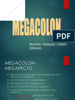 Mega Colon