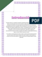 ELABORACIÓN DE JARABE INVERTIDO