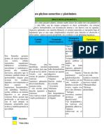 Resumen Phylum Nemertino y Platelminta