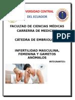 1 Infertilidad Marco teórico a Word.docx