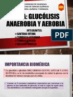 Glucolisis Aerobia y Anaerobia
