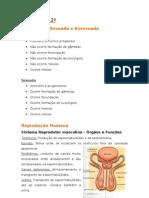 BIOLOGIA 12º - Marcelo
